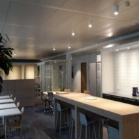 Office Landscaping and facilities Mango in Geneva Lausanne Basel Zurich
